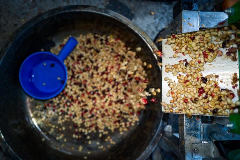 Read more about the article 咖啡標籤怎麼看?Pt. 2 處理法的花花世界
